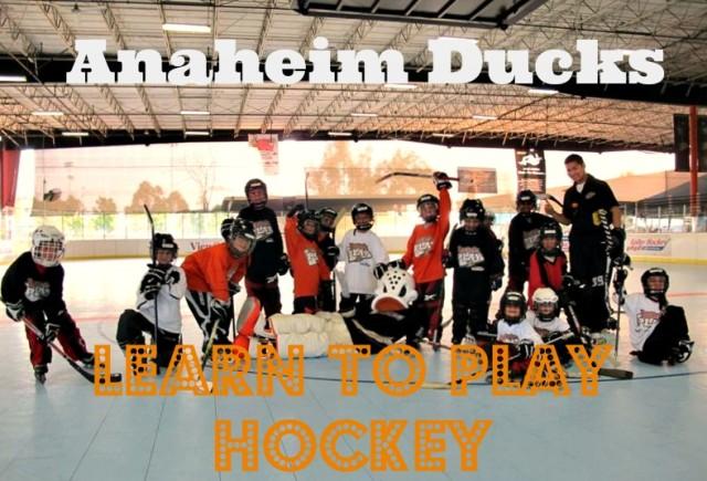 Hockey Sticks & Skates - HockeyMonkey.com